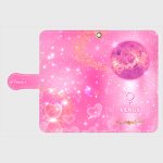金星(V-1)